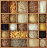 Cereals in wooden box Stock Image