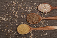 Cereals on wooden spoons Stock Image