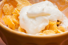 Cereals and yoghurt. Bowl for a tasty and healthy meal royalty free stock photo