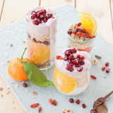 Cereals with yoghurt and fresh fruits Stock Photos