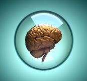 Cerebro libre illustration
