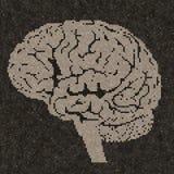 Cerebro compuesto en las tejas, efecto del mosaico del cerebro Fotografía de archivo libre de regalías