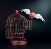 Cerebro con alas Foto de archivo libre de regalías