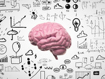 Cerebro 3d Fotografía de archivo libre de regalías