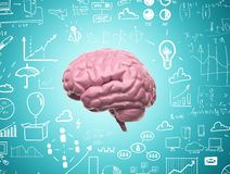 Cerebro 3d Fotografía de archivo
