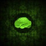 Cerebro de Digitaces Imagenes de archivo