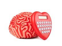Cerebro de goma humano con la calculadora en forma de corazón Imágenes de archivo libres de regalías