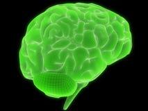 Cerebro del alambre libre illustration
