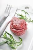 Cerebro del cordero foto de archivo libre de regalías