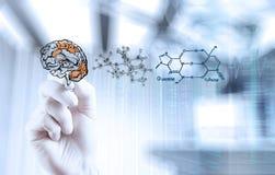 Cerebro del dibujo de la mano del neurólogo del doctor foto de archivo libre de regalías