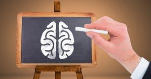 Cerebro del dibujo de la mano en la pizarra imagenes de archivo