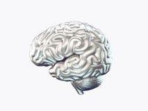 Cerebro del metal Fotografía de archivo libre de regalías