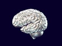 Cerebro del metal Imagenes de archivo
