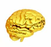 Cerebro del oro representación 3d ilustración 3D Foto de archivo libre de regalías