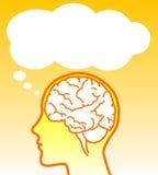 Cerebro del vector con el globo ilustración del vector