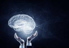 Cerebro en las manos masculinas imagen de archivo