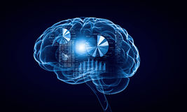 Cerebro humano imagen de archivo