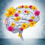 Cerebro humano con las flores Fotos de archivo