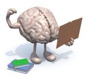 Cerebro humano con los brazos, las piernas y muchos libros a mano Imagen de archivo