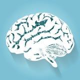 Cerebro humano con los engranajes Vector para su diseño Imagen de archivo libre de regalías