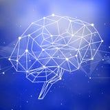 Cerebro humano de los triángulos, de las líneas y de los puntos situados en un fondo tecnológico azul Imagen de archivo libre de regalías
