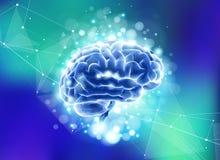 Cerebro humano en un fondo tecnológico azul rodeado por los campos de información, redes neuronales, web de Internet ilustración del vector