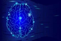 Cerebro humano que brilla intensamente Concepto poligonal de la idea de la mente de la pendiente azul marino Ejemplo futurista de Imagenes de archivo