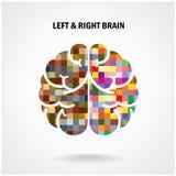 Cerebro izquierdo creativo y cerebro derecho Imágenes de archivo libres de regalías