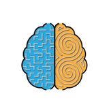 Cerebro izquierdo y derecho con laberintos dentro del concepto Imagen de archivo libre de regalías