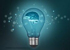 Cerebro ligero Foto de archivo libre de regalías