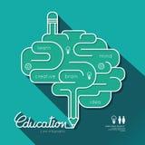 Cerebro linear plano del esquema de la educación de Infographic de la educación Foto de archivo libre de regalías