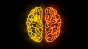 Cerebro 004 - neón de Infographic 4K ilustración del vector