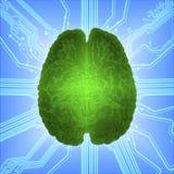 Cerebro que brilla intensamente atado con alambre sobre el microcircuito del ordenador Inteligencia artificial AI y concepto de a Imagen de archivo libre de regalías