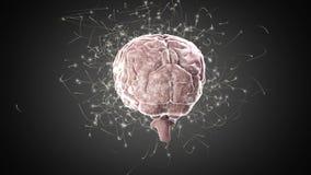 Cerebro que hace girar en fondo negro ilustración del vector