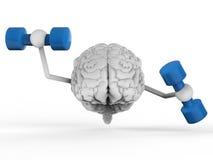 Cerebro que lleva a cabo pesas de gimnasia
