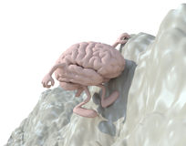 Cerebro que sube una montaña ilustración del vector