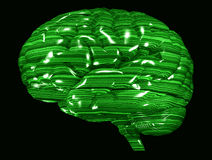 Cerebro verde de la matriz Imagen de archivo libre de regalías