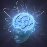 Cerebro vivo ilustración del vector