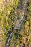 Ceredigion da cachoeira de Tresaith imagens de stock royalty free