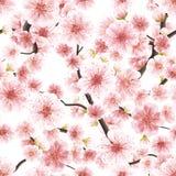 Cereja de florescência cor-de-rosa sem emenda de Sakura Eps 10 ilustração royalty free