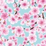 Cereja de florescência cor-de-rosa sem emenda de Sakura Eps 10 ilustração do vetor