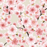 Cereja de florescência cor-de-rosa sem emenda de Sakura Eps 10 Imagens de Stock Royalty Free