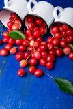 Cereja dispersada dos copos do esmalte Cerejas no copo do ferro no fundo de madeira azul Saudável, fruto do verão Cerejas três U  Imagem de Stock