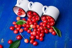 Cereja dispersada dos copos do esmalte Cerejas no copo do ferro no fundo de madeira azul Saudável, fruto do verão Cerejas três U  Fotos de Stock