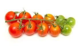 Cereja dos tomates isolada no branco Fotografia de Stock