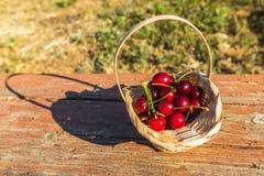 A cereja está sobre na cesta Foto de Stock Royalty Free