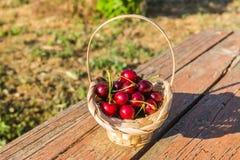 A cereja está sobre na cesta Imagens de Stock