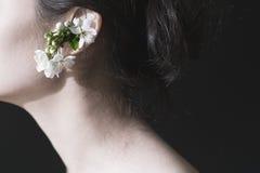A cereja floresce nas orelhas do ` s da menina Imagem de Stock Royalty Free