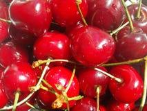 Cereja fresca vermelha bonita Foto de Stock Royalty Free