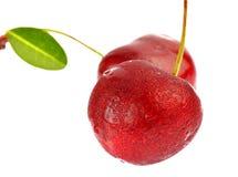 Cereja madura doce com a folha isolada no fundo branco Fotos de Stock Royalty Free